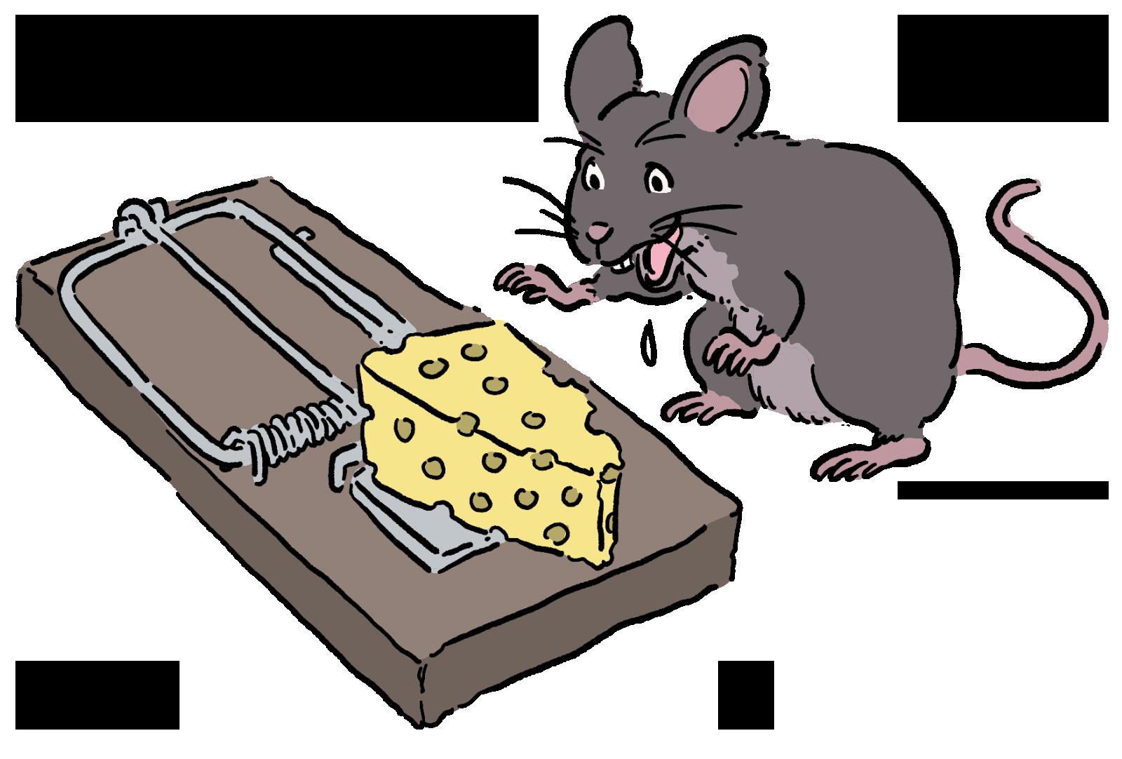ネズミの罠は何を買えばいいの?
