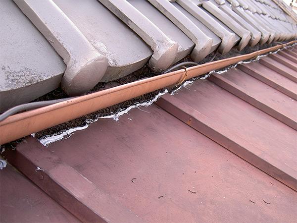 屋根の重なり ネズミの侵入口