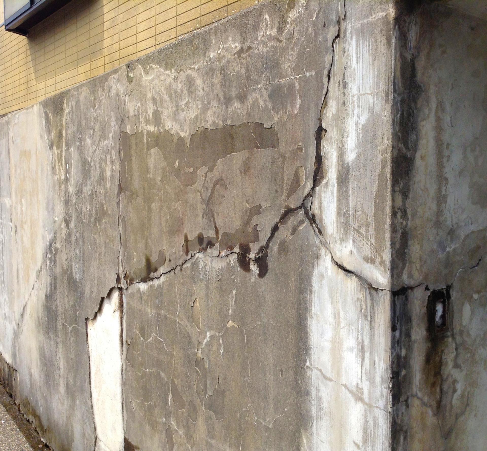 ネズミの住宅の基礎・床下からの侵入