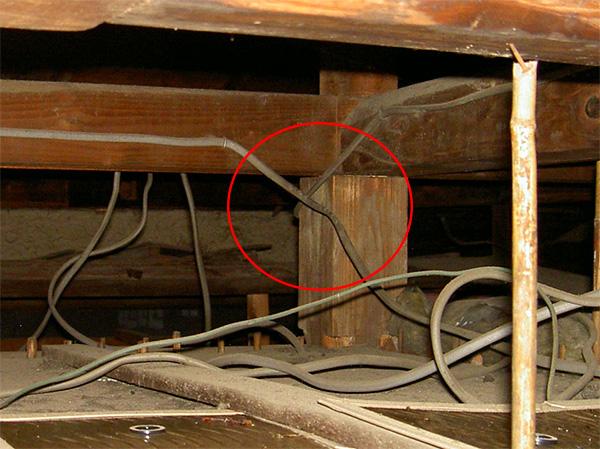 場所は天井裏、電気コードに付いたラットサイン