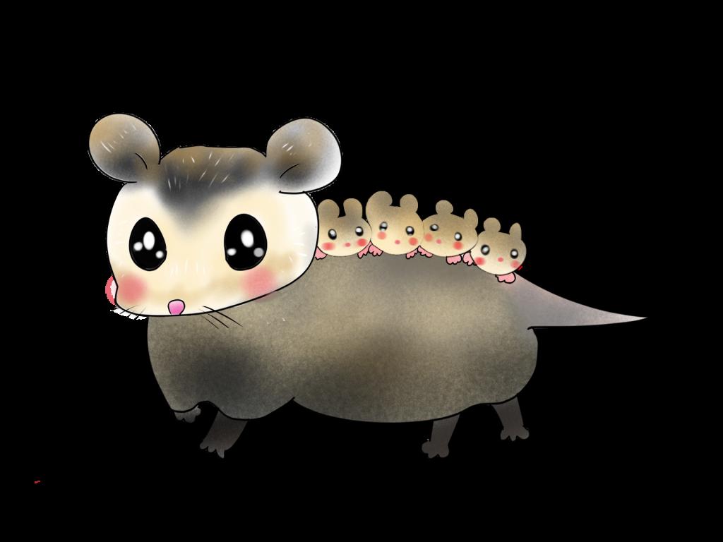 ネズミ対策の第一歩は環境づくり 繁殖したくない状況を作る