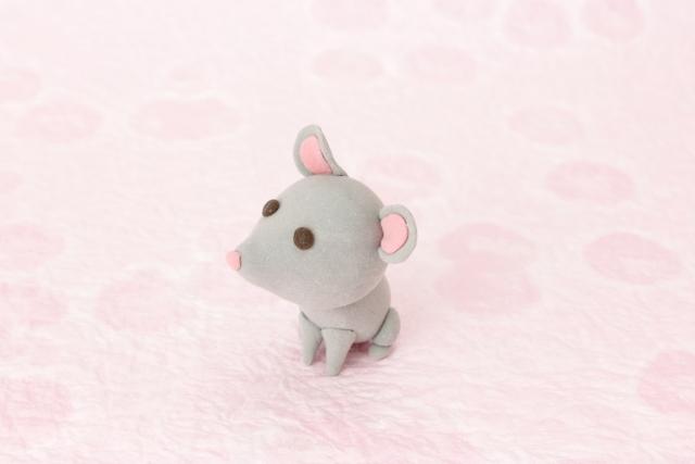 琵琶湖の葦の湿地に住むネズミがクマネズミ?