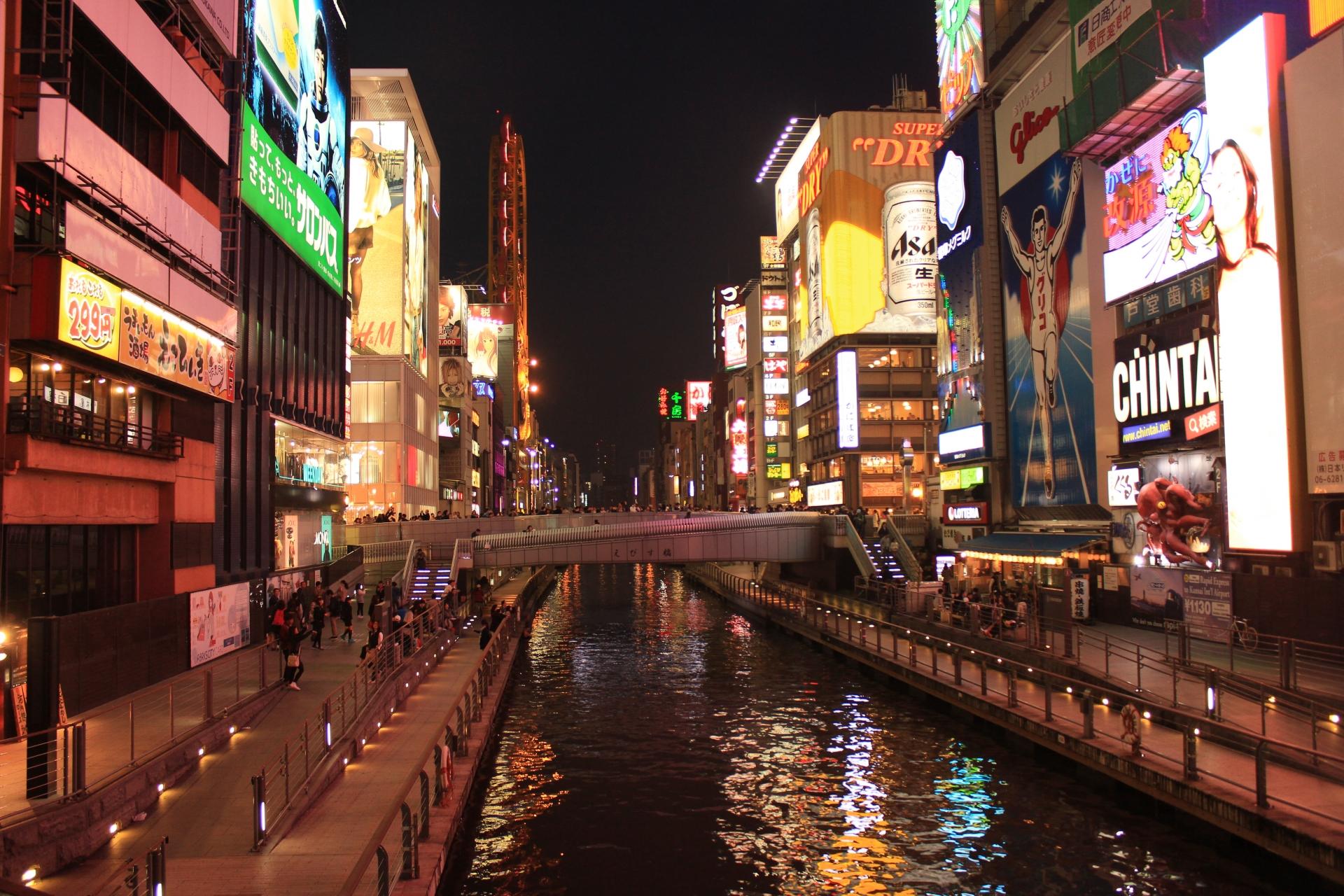 大阪でネズミ駆除業者を探すならここ